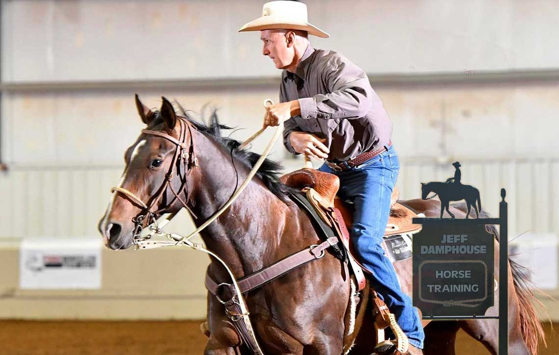 Horse Trainer - Texas, New Mexico, colorado