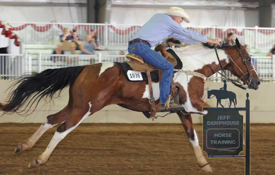 USA Horse Training Expert Jeff Damphouse - Oklahoma