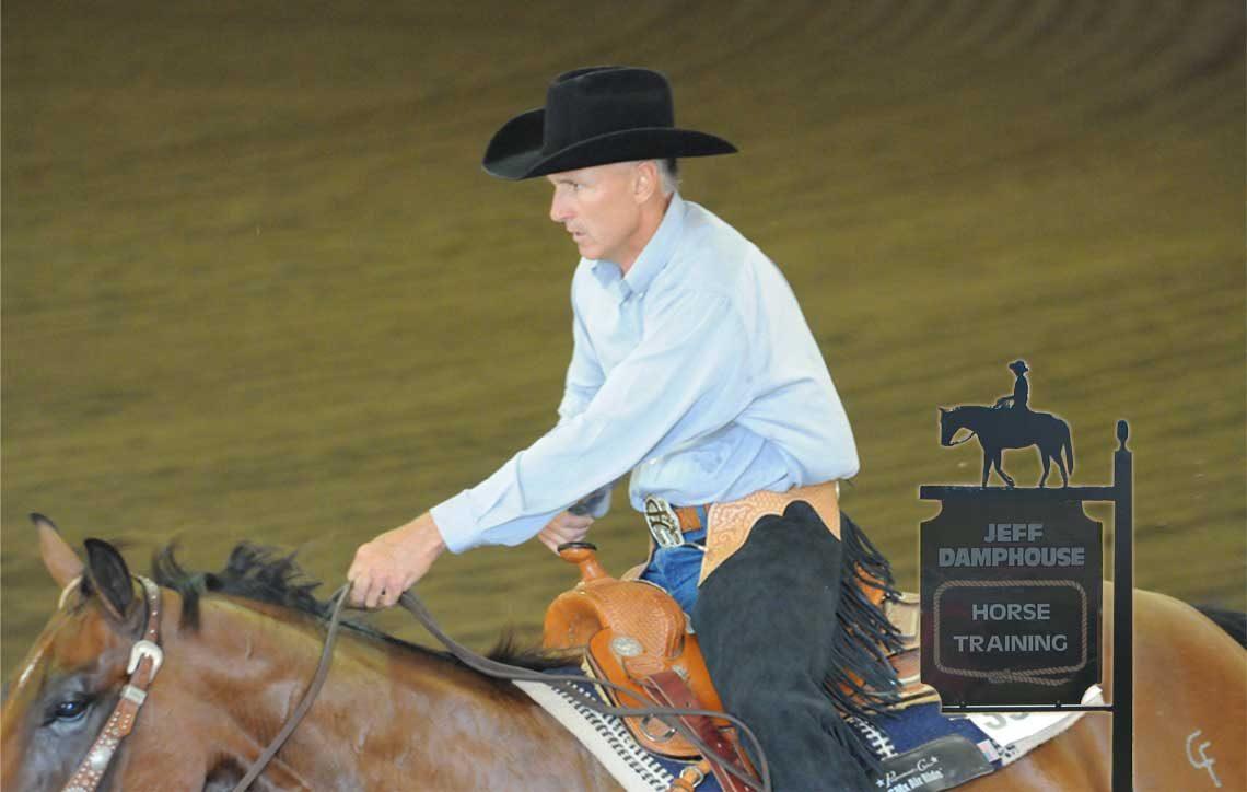 Horse Trainer USA - Expert horsemanship