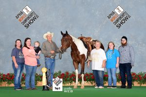 3rd in Junior Barrels at the APHA World Show