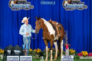 2 Champion Titles, 1 Reserve at the Paint Horse Congress