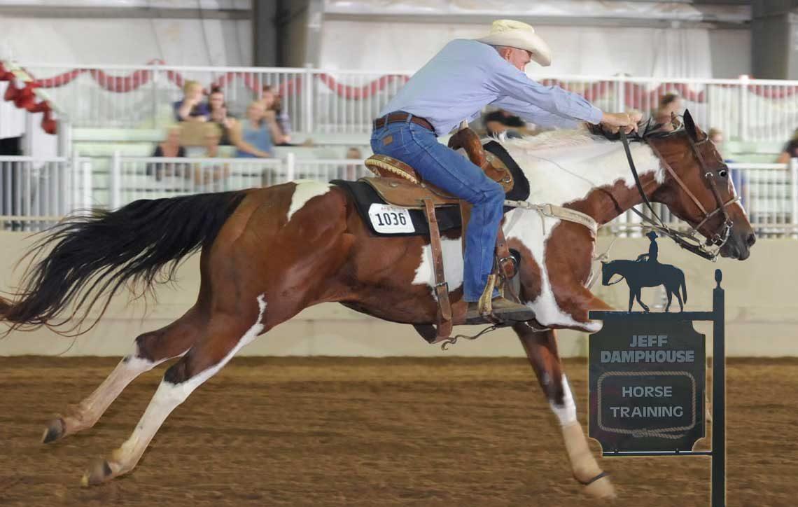 USA Horse Training Expert Jeff Damphouse - Oklahoma